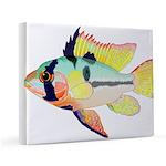Ram Butterfly Cichlid 11x14 Canvas Print
