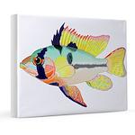 Ram Butterfly Cichlid 8x10 Canvas Print