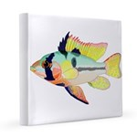 Ram Butterfly Cichlid 8x8 Canvas Print