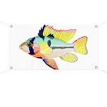 Ram Butterfly Cichlid Banner