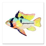 Ram Butterfly Cichlid Square Car Magnet 3