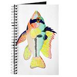 Ram Butterfly Cichlid Journal