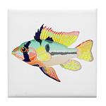 Ram Butterfly Cichlid Tile Coaster