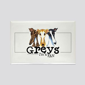 Greys Fan Funny Rectangle Magnet