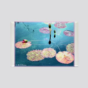 Water Lilies, colorful, Rectangle Magnet