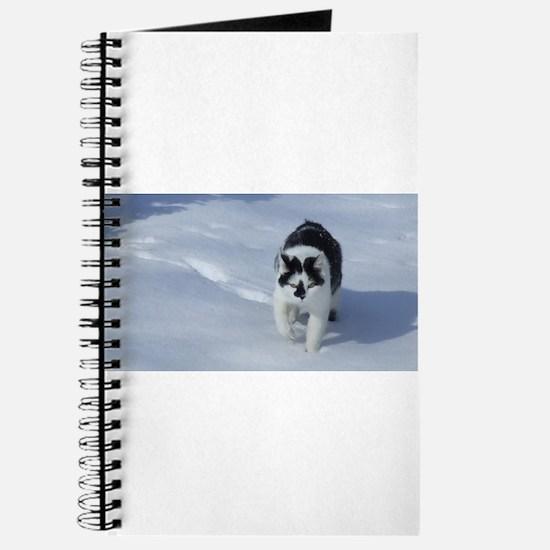 Sourpuss in the snow Journal
