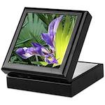 Wild Birdlike Iris Keepsake Box