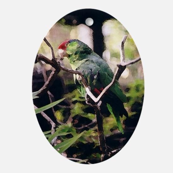 Amazon series 6 Oval Ornament