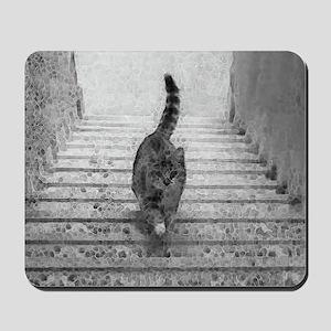 CatStairsLg Mousepad