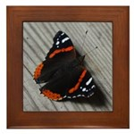 Red Admiral Butterfly Framed Tile
