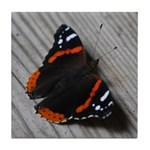 Red Admiral Butterfly Tile Coaster