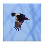 Red-headed Woodpecker Flying Tile Coaster
