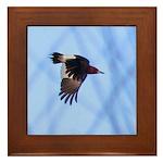 Red-headed Woodpecker Flying Framed Tile