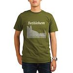 Bethlehem Organic Men's T-Shirt (dark)