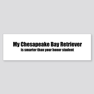 My Chesapeake Bay Retriever i Bumper Sticker