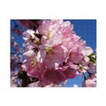 Pink Cherry Blossoms Small Puzzle