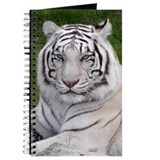 Tiger Journals & Spiral Notebooks