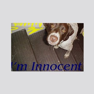 Innocent Freddy Rectangle Magnet