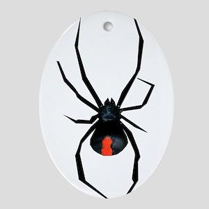 Redback Spider Ornament (Oval)