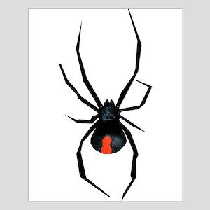 Redback Spider Small Poster