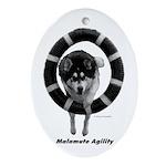 Malamute Agility Ornament (Oval)