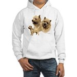 Cairn Terrier Hooded Sweatshirt