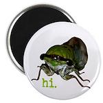 Cicada hi. Magnet