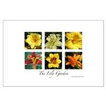 The Lily Garden Large Poster