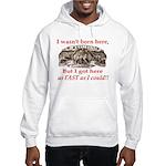 Not Born Here Hooded Sweatshirt