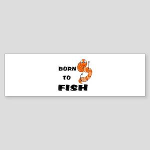 Born To Fish Sticker (Bumper)