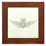 Master Flight Surgeon Framed Tile