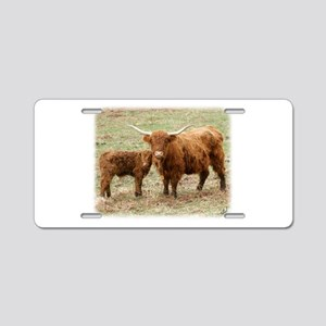Highland Cow and calf 9Y316D-045 Aluminum License