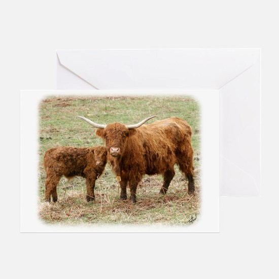 Highland Cow and calf 9Y316D-045 Greeting Card