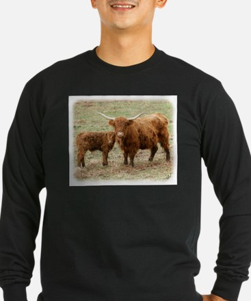 Highland Cow and calf 9Y316D-045 T