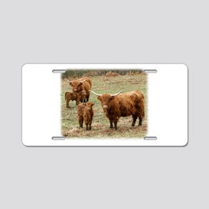 Highland Cattle 9Y316D-055 Aluminum License Plate