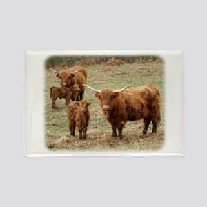 Highland Cattle 9Y316D-055 Rectangle Magnet