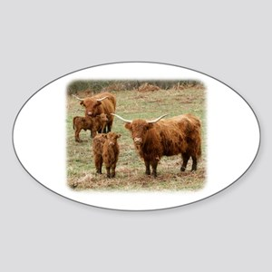 Highland Cattle 9Y316D-055 Sticker (Oval)