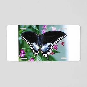 Spicebush Swallowtail Aluminum License Plate