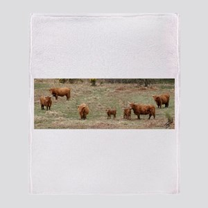 Highland Cattle 9Y316D-007 Throw Blanket