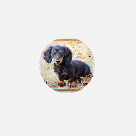 Puppy Love Doxie Mini Button