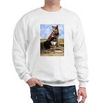 Malamute Sweetness Sweatshirt