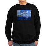 Money Sweatshirt (dark)
