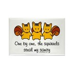 One by one, the squirrels Rectangle Magnet (10 pac