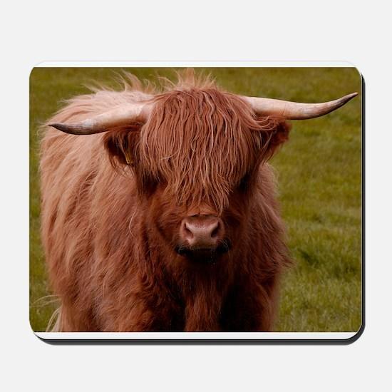 Scottish Highland Cow Mousepad