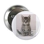 """Cat Coat 2.25"""" Button"""