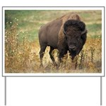 Bison Yard Sign