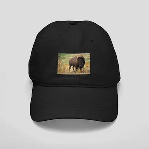 Bison Black Cap