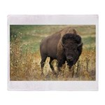 Bison Throw Blanket