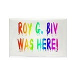 Roy G. Biv Graffiti (rainbow) Rectangle Magnet (10