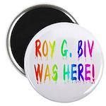 Roy G. Biv Graffiti (rainbow) Magnet